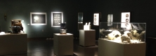 Exposition «Ivoire dans le noir» au Musée de la mer, Marianne Papillon 2015
